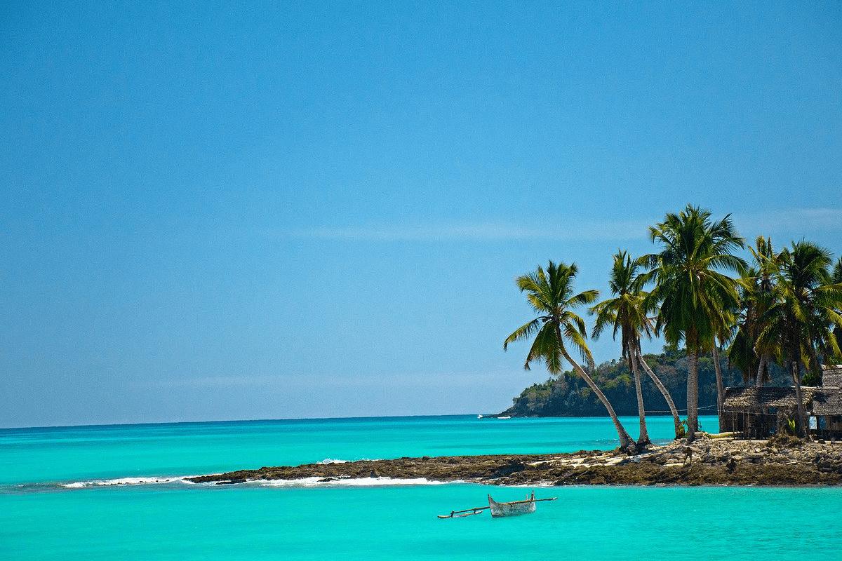 Escapade à Madagascar : une chance de découvrir sa faune marine