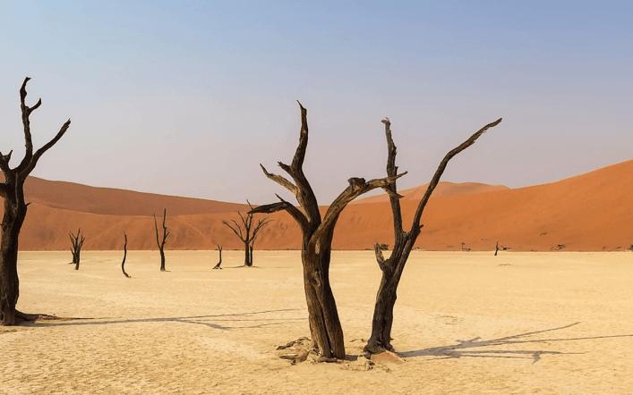 Les choses intéressantes à faire pendant un voyage en Namibie